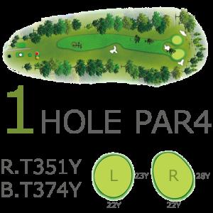 Hole1 PAR.4